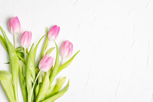 Bouquet of gentle pink tulips on white plaster background