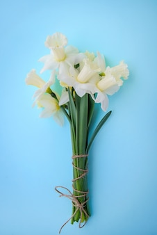 Bouquet of light yellow with white daffodils on blue background