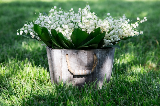 Bouquet of lilies of the valley in a basket. floral background with places for your text
