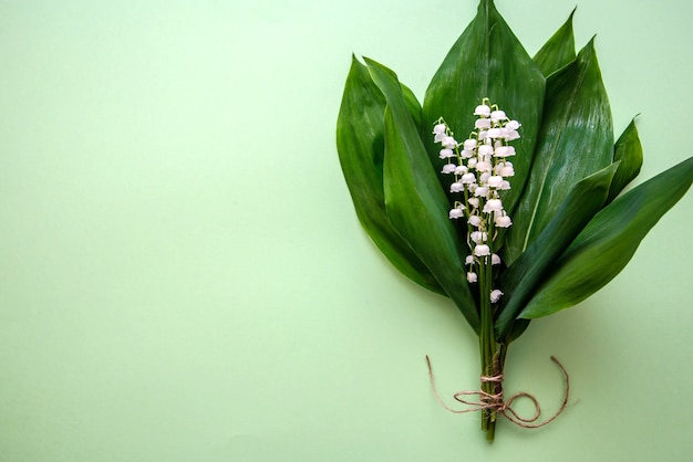 Bouquet of lilies of the valley on green