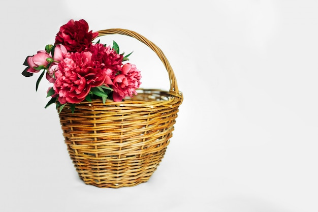 Bouquet of living coral and pink  peonies in a  basket