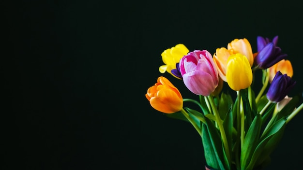 Bouquet of multicolored tulips flowers