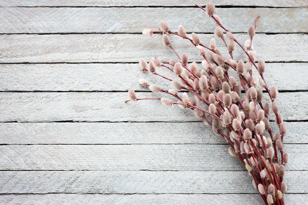 밝은 나무 배경에 꽃이 만발한 버드 나무의 꽃다발