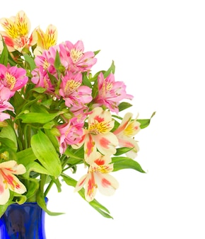 흰색 배경에 고립 된 alstroemeria 꽃의 꽃다발