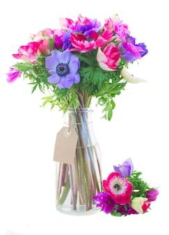 흰색 배경에 고립 된 유리 꽃병에 말미잘 꽃의 꽃다발