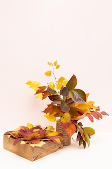 Букет из цветных осенних листьев