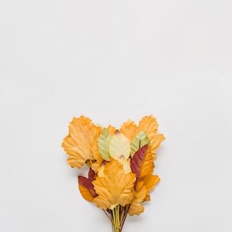 白い背景の上の秋の花束を葉します。 無料写真