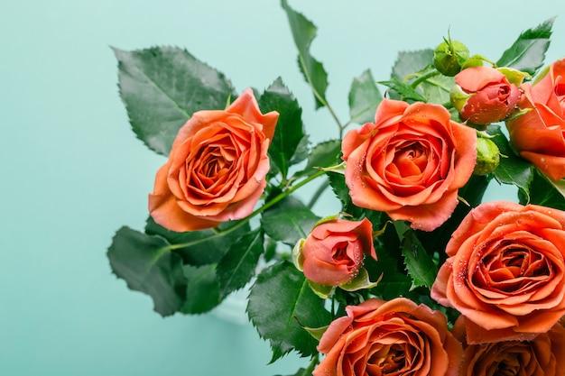 Букет из красивых коралловых роз на бирюзовом фоне.