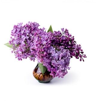 Букет красивых свежих сиреневых цветов