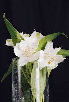 花瓶に美しい新鮮な白い花の花束