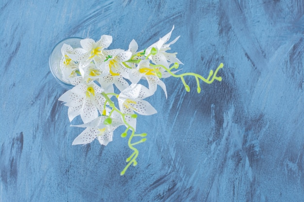 파란색에 배치된 아름다운 백합 호랑이의 꽃다발.