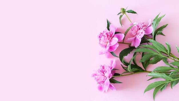 복사 공간이 있는 밝은 분홍색 탁자 위에 있는 아름다운 분홍색 모란 꽃 꽃다발