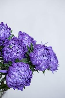 Букет из синих хризантем крупным планом на белом размытом фоне, копией пространства.