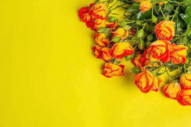 밝은 노란색 배경에 밝은 주황색 장미 꽃다발