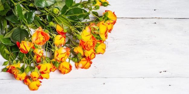 흰색 배경에 밝은 오렌지 장미 꽃다발