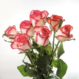 白い背景の上の明るいバラの花束。