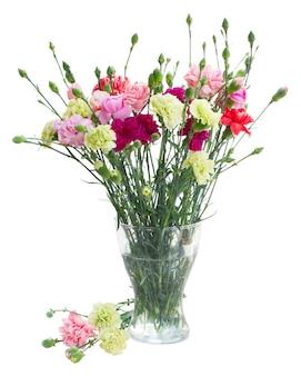 白いスペースで隔離のガラスの花瓶のカーネーションの花の花束