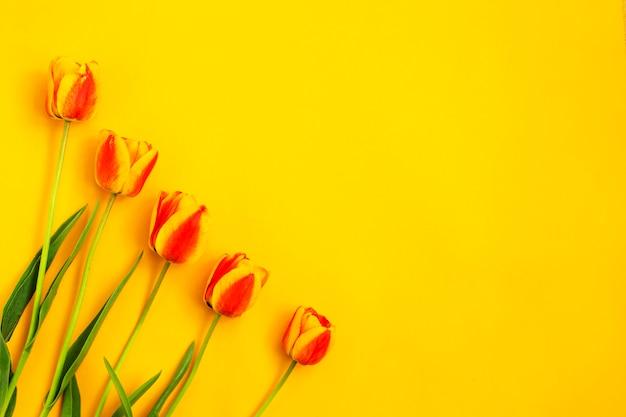黄色の背景に色の春のチューリップの花束。春の花。イースター、バレンタイン、3月8日、お誕生日おめでとう、休日のコンセプト。コピースペース