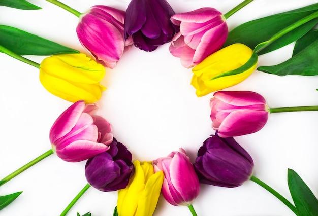 Букет красочных тюльпанов на белом фоне на круглой рамке на белом фоне