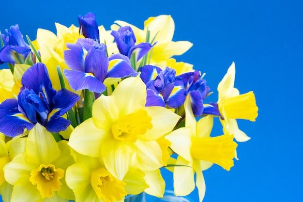 分離された水仙とアイリスの花の花束