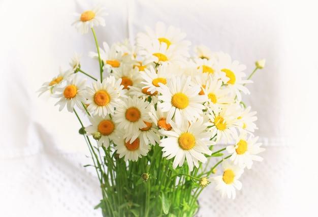 Букет ромашек на белом фоне весенняя композиция