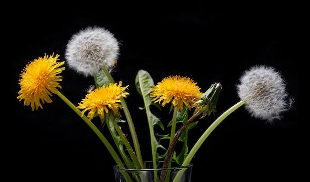 黒のタンポポの花束