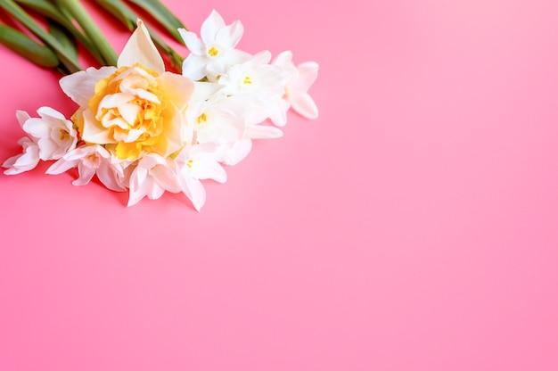花の花束はテキスト用のスペースとピンクの背景に満開の白と黄色の水仙を水仙します。