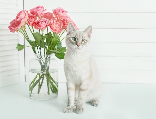 귀여운 새끼 고양이 근처 꽃 장미 꽃다발