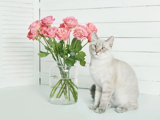 Букет цветов роз возле милый котенок
