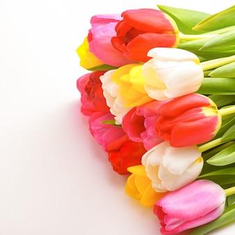 Букет из свежих, ярких, разноцветных тюльпанов, изолированные.