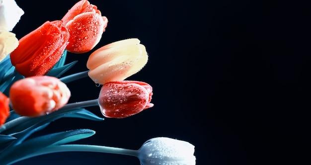 Букет из живых цветов праздничный подарок любимому человеку фон день святого валентина