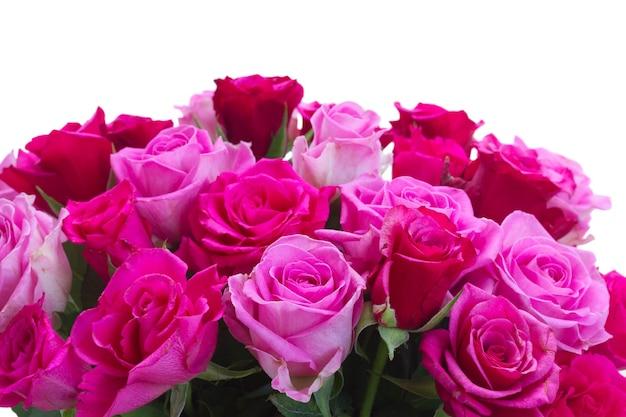 白い背景で隔離の新鮮なピンクとマゼンタの新鮮なバラのボーダーの花束