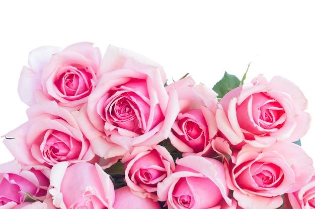 新鮮なピンクのバラの花束は、白い背景で隔離のクローズアップ