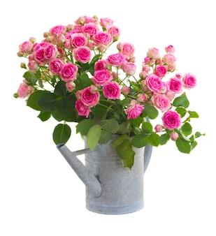 흰색 공간에 절연 물을 수있는 신선한 분홍색 장미 꽃다발