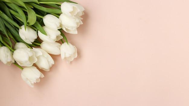 신선한 봄 흰색 튤립 꽃다발 밝은 파스텔 표면, 상위 뷰, 복사 공간에 놓여 있습니다.
