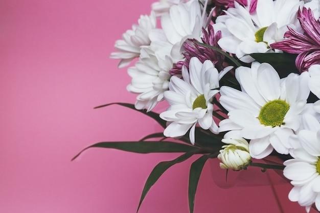 신선한 흰색과 분홍색 카모마일 국화 꽃다발