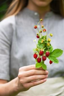 赤と緑のベリーの花と女の子の手の葉と新鮮な野生のイチゴの花束