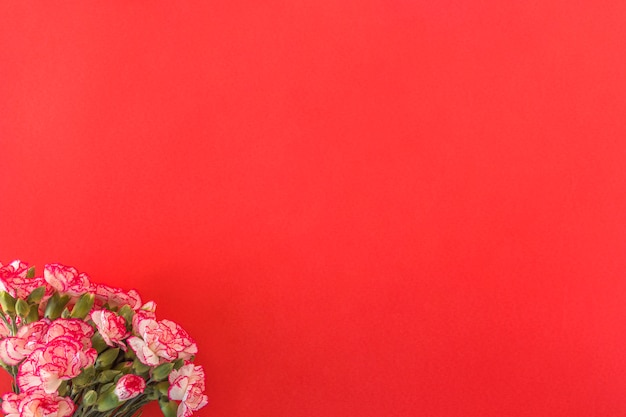 新鮮な素敵な花の花束