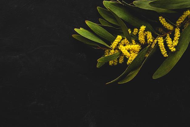 신선한 노란 봄 꽃의 꽃다발