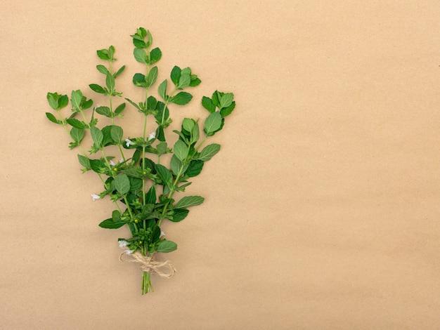 디자인을 위한 장소가 있는 갈색 배경에 꼬기의 활이 있는 녹색 레몬 밤의 꽃다발.