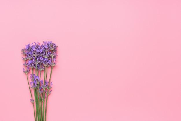 Букет цветов лаванды на розовом столе