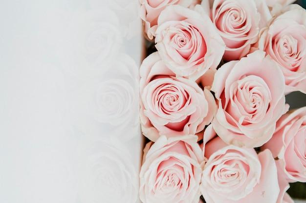 밝은 분홍색 장미 배경의 꽃다발