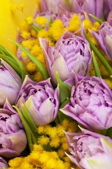 黄色の壁、マクロ、クローズアップのライラックチューリップと黄色のミモザの花束。