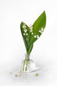 흰색 바탕에 꽃병에 백합 계곡의 꽃다발 프리미엄 사진