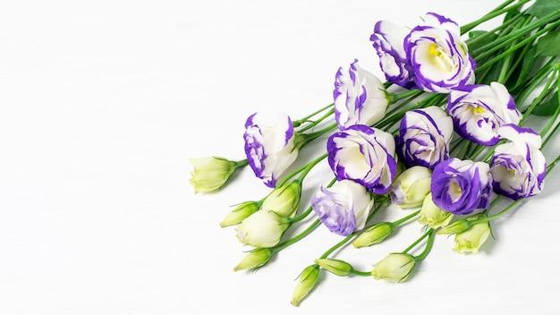 白い背景のクローズアップにトルコギキョウまたはトルコギキョウの花束
