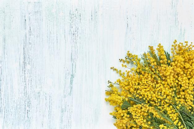 Букет цветов мимозы на голубом фоне. копирование пространства, вид сверху. день матери, день рождения, международный женский день, концепция дня святого валентина. открытка.