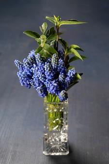 테이블에 꽃병에 쥐 히아신스의 꽃다발