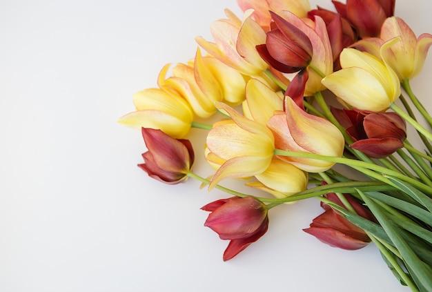 Букет из разноцветных тюльпанов. свежие весенние цветы, цветочный фон. концепция праздника.