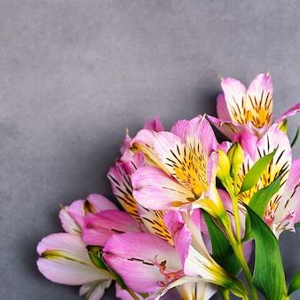 Букет из орхидей красивый, свежий, ярко-сиреневый на сером фоне.