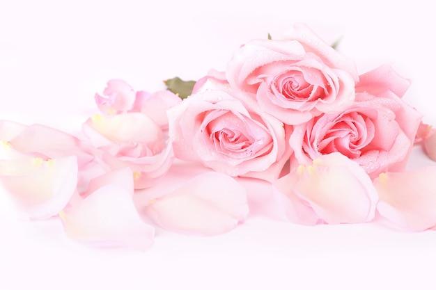 Букет из нежно-розовых роз с лепестками на светлом фоне. открытка фон на день святого валентина
